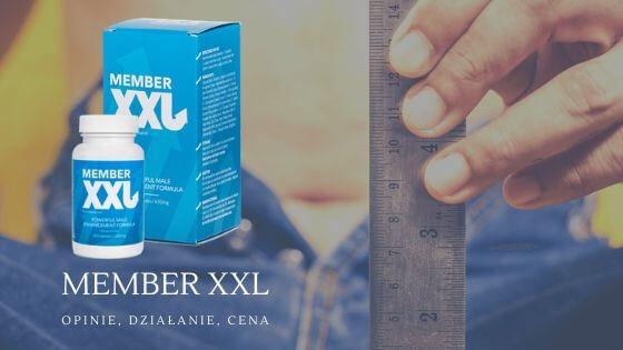 ¿Dónde comprar el Member XXL?